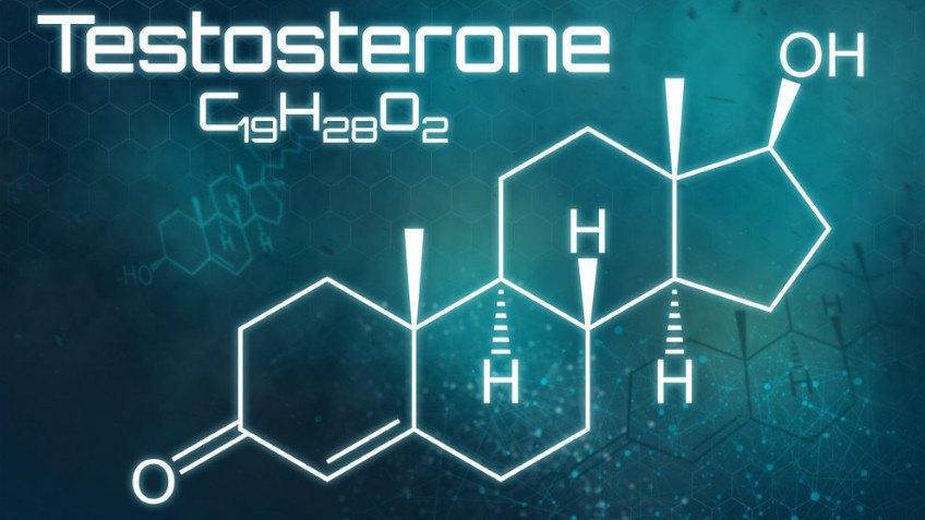 testosteron może wpływać na erekcję